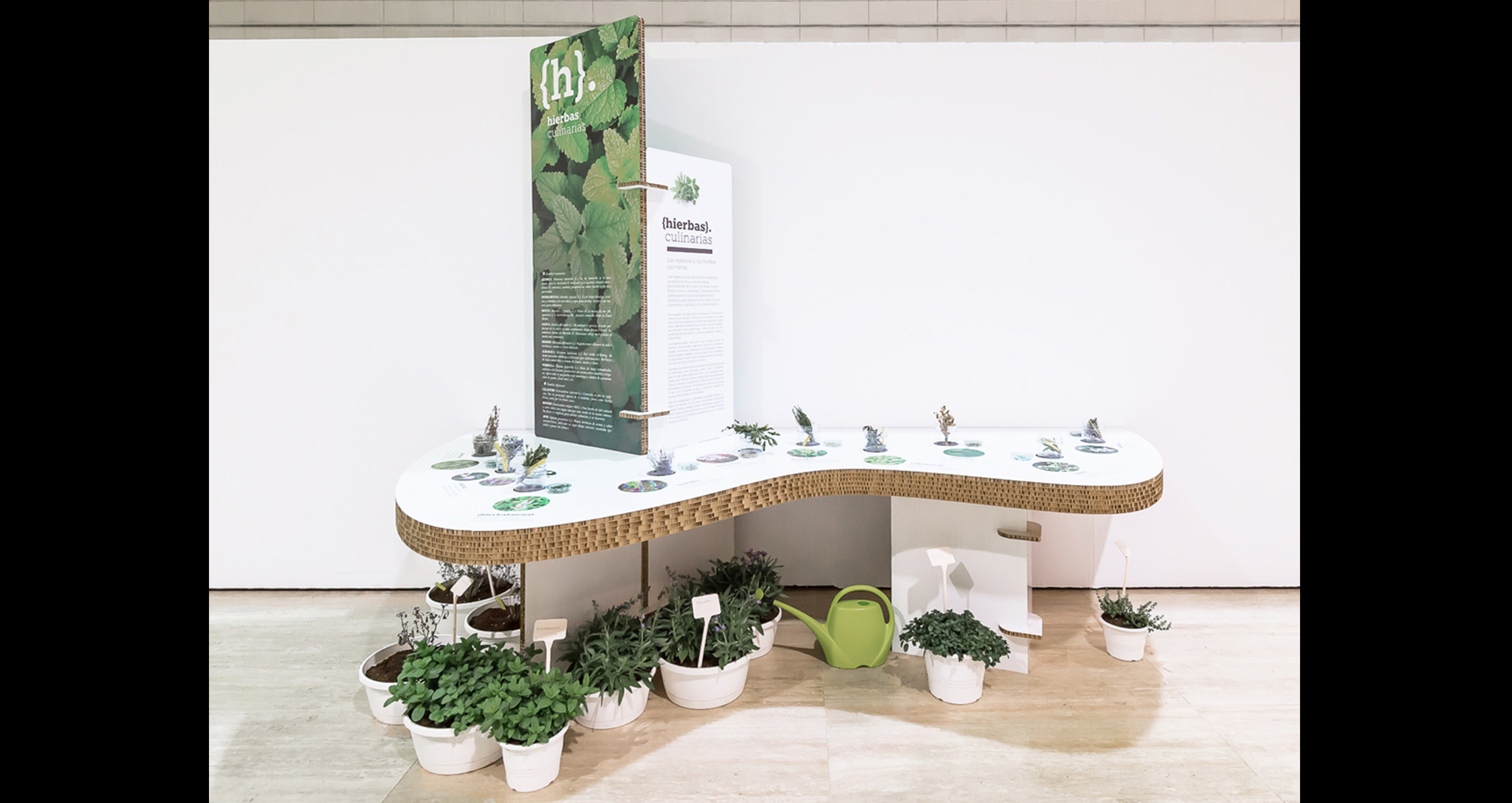 DESIGN TRAVELLING EXHIBITION SPICES THE WORLD OF TASTE BY CARMENCITA CHAIR STUDIES OF GASTRONOMIC TASTE BY ROCAMORA ARCHITECTURE ELCHE ALICANTE SPAIN