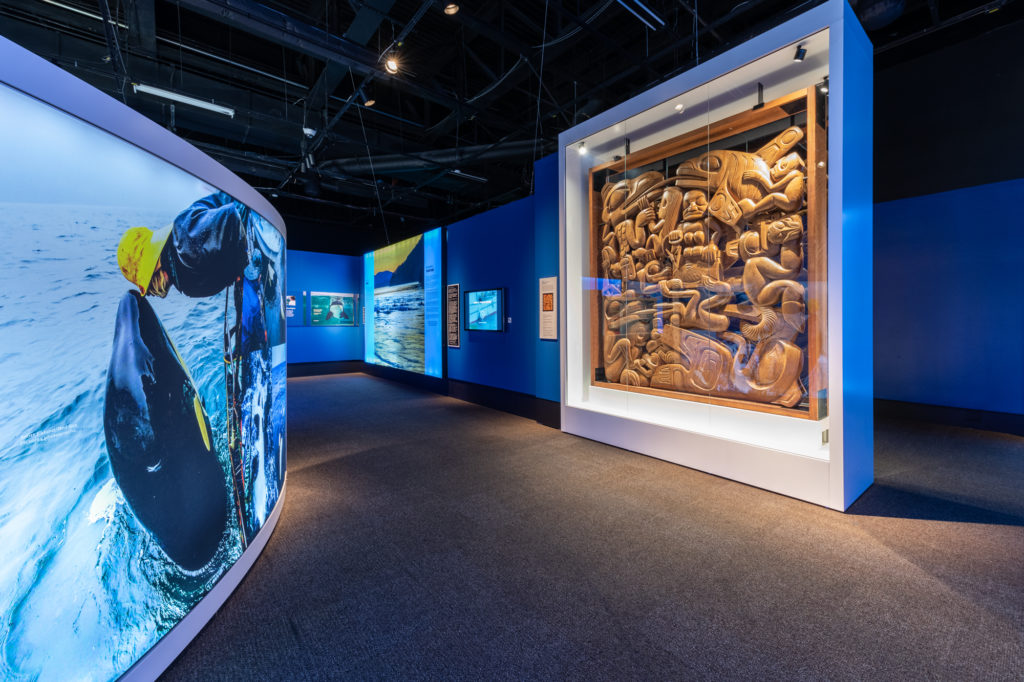 OPENING OF THE EXHIBITION KILLER WHALES: OUR SHARED FUTURE